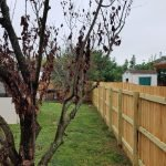 Ritter_Fence_After - Richmond Exteriors
