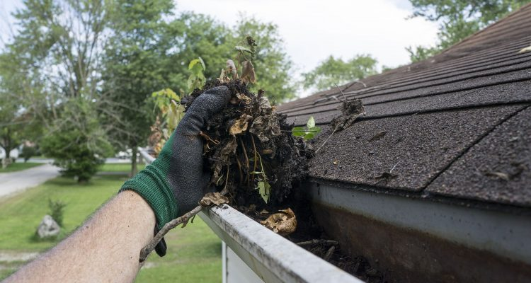 Clogged Gutters Indianapolis - Richmond Exteriors