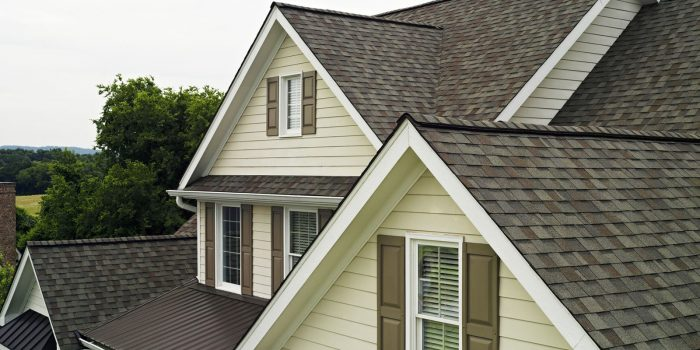 Roofing Shingle Repair - Roof Repair Indianapolis - Richmond Exteriors